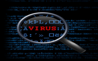 Virus and Malware Removal & Protection